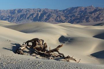 desert-1443127_640