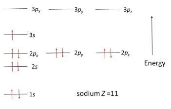 sodium-cropped