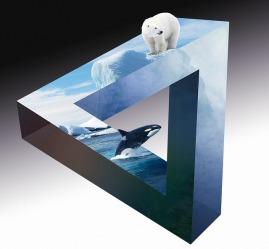 polar-bear-2331524_640